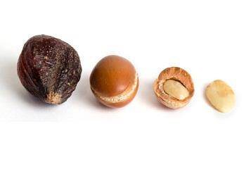 argan nøddernes kvalitet