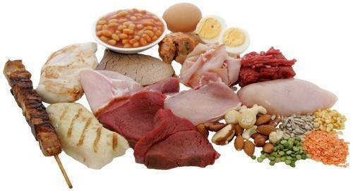 ren proteinkur