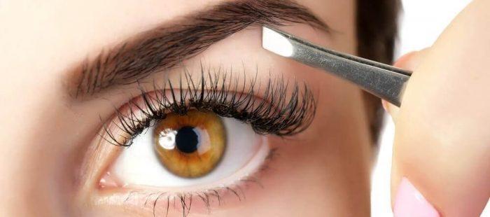 skæl i øjenbrynene