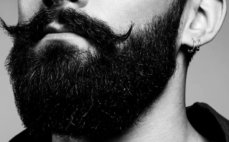 skæl i skægget