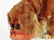 hundefoder tyskland