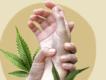 cbd mod smerter guide